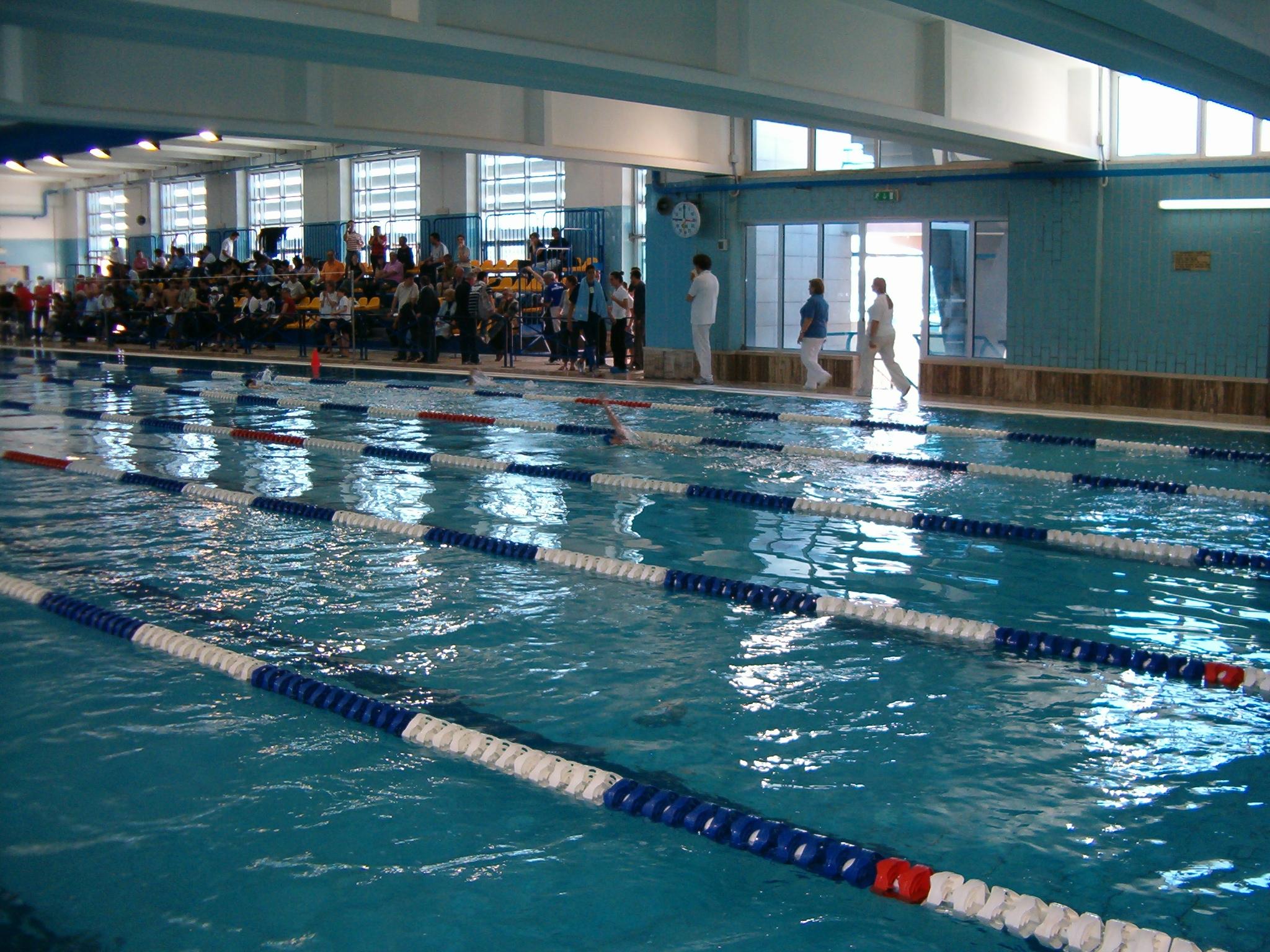 Nuoto il cus bari 9 al trofeo primavera con 7 medaglie - Nuoto in piscina ...